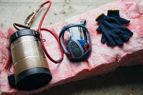decontamination-animal-rive-sud souris ratons laveurs pigeons sainte julie longueuil monteregie montreal